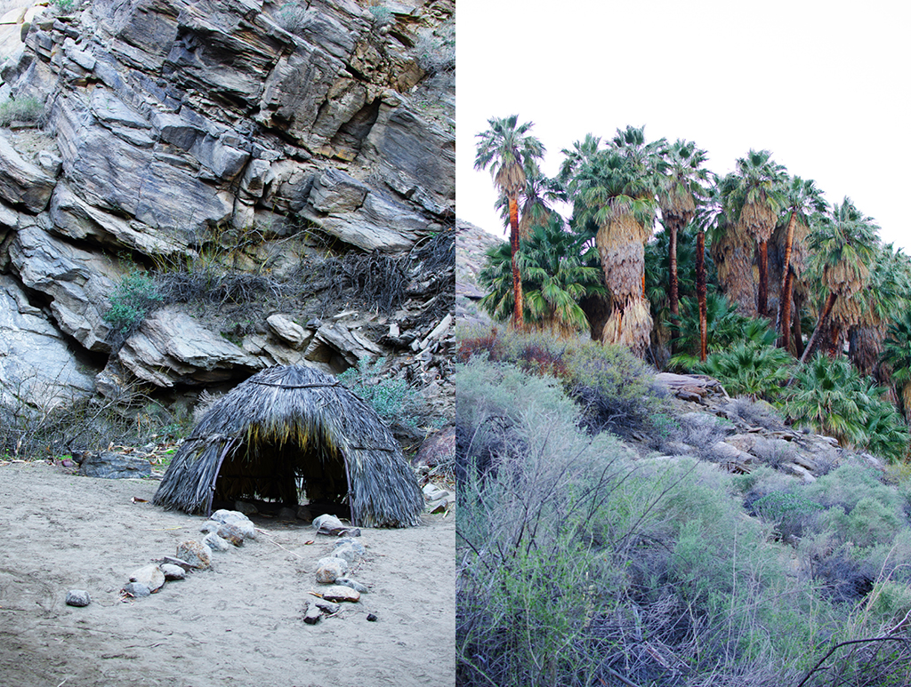 palm-canyon-hike-11