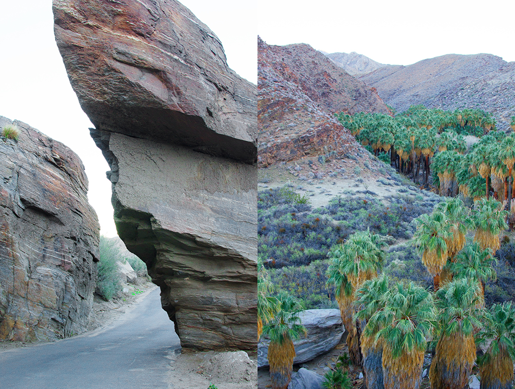 palm-canyon-hike-12